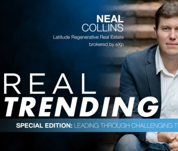 REAL-Trending-Special-Edition-Collins
